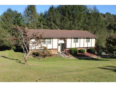 Kingsport Single Family Home For Sale: 303 Hidden Valley Rd.
