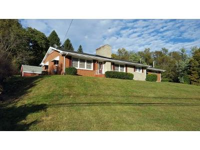 Single Family Home For Sale: 105 Park Hill Road