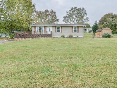 Single Family Home For Sale: 1413 Weaver Branch Rd