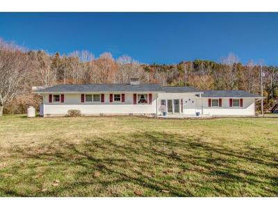 Roan Mountain Single Family Home For Sale: 309 Heaton