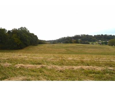 Greene County Residential Lots & Land For Sale: Rock Quarry Rd.