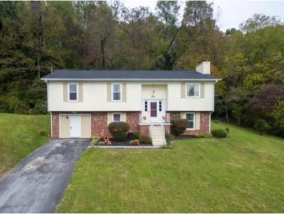 Bristol VA Single Family Home For Sale: $145,000