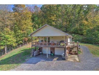Single Family Home For Sale: 162 Dogwood Lane