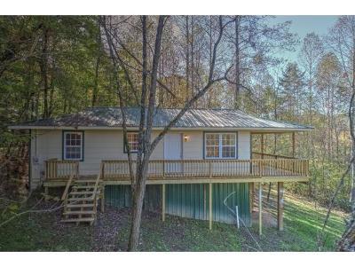 Single Family Home For Sale: 138 Dogwood Lane