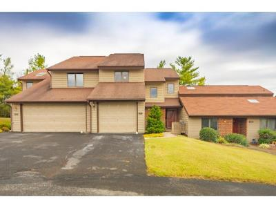 Kingsport Condo/Townhouse For Sale: 249 Willowbend Drive