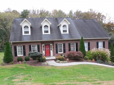 Blountville Single Family Home For Sale: 212 Southridge Dr.