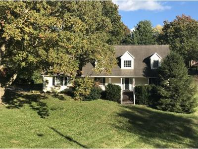 Johnson City Single Family Home For Sale: 12 Estate Court