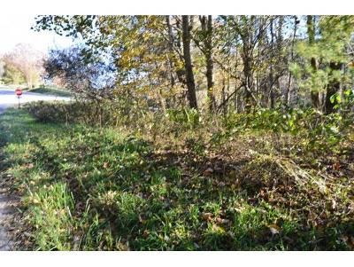 Residential Lots & Land For Sale: TBD Buck Mountain Road