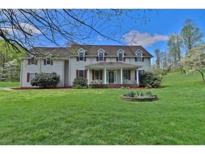 Blountville Single Family Home For Sale: 210 Wine Circle