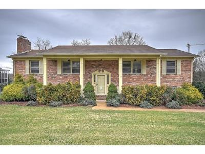 Kingsport Single Family Home For Sale: 731 Greengate Rd