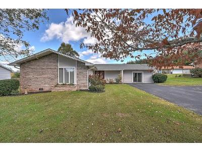 Bristol Single Family Home For Sale: 24159 Highpoint Rd