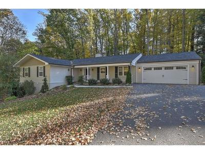 Kingsport Single Family Home For Sale: 4523 Mitchell Rd