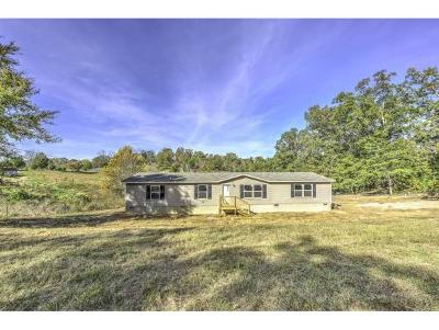 Single Family Home For Sale: 480 Ridge Road