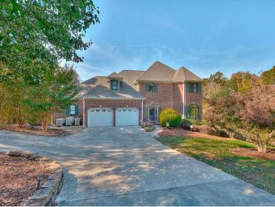 Piney Flats Single Family Home For Sale: 231 Sugar Hollow Trail