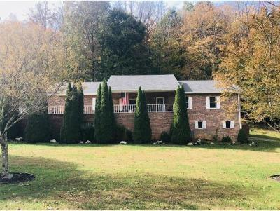 Unicoi Single Family Home For Sale: 1320 Suntree