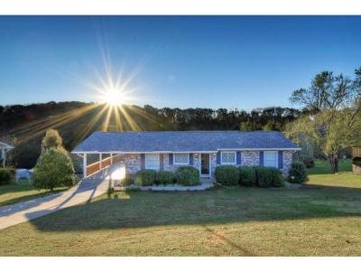 Single Family Home For Sale: 317 Merman Rd