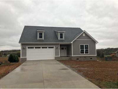 Greeneville Single Family Home For Sale: 111 Valerie Lane