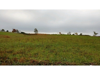 Greene County Residential Lots & Land For Sale: TBD Old Snapps Ferry Rd