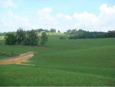 Residential Lots & Land For Sale: 283 Mitchell Ridge Road