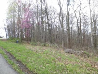 Residential Lots & Land For Sale: 389 Mitchell Ridge Road
