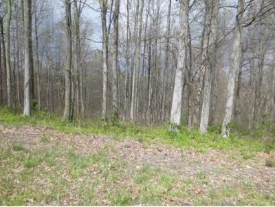 Residential Lots & Land For Sale: 373 Mitchell Ridge Rd.