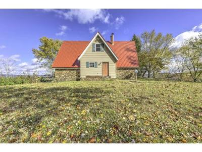 Single Family Home For Sale: 454 Hurley Drive