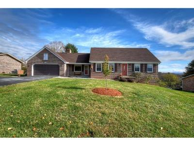 Bluff City Single Family Home For Sale: 436 River Road