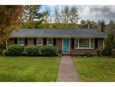 Bristol Single Family Home For Sale: 114 Green Valley Rd