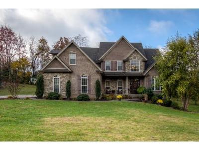 Bristol Single Family Home For Sale: 23128 Kestrel Dr