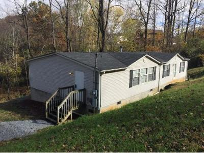 Elizabethton Single Family Home For Sale: 132 Old Charity Hill