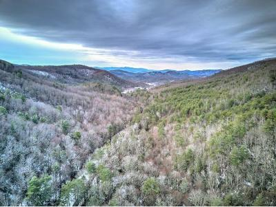 Greene County Residential Lots & Land For Sale: Viking Mtn Road