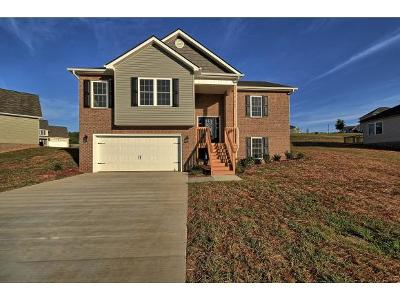 Jonesborough Single Family Home For Sale: 729 Ashley Meadows