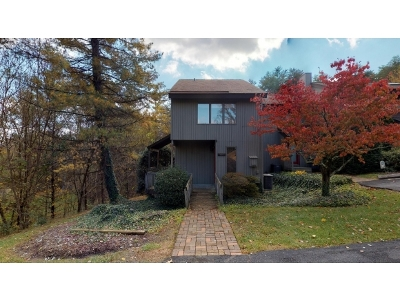 Kingsport Condo/Townhouse For Sale: 101 Willowbrook Dr.