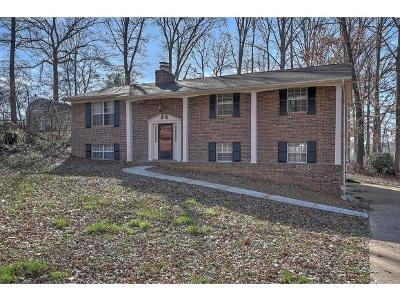 Greeneville TN Single Family Home For Sale: $174,900