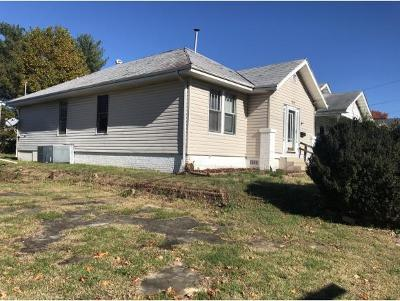 Johnson City Single Family Home For Sale: 210 W W. Chilhowie Ave