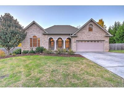 Johnson City Single Family Home For Sale: 310 Woodbriar Dr