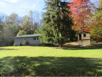Roan Mountain Single Family Home For Sale: 223 Fork Mountain Road