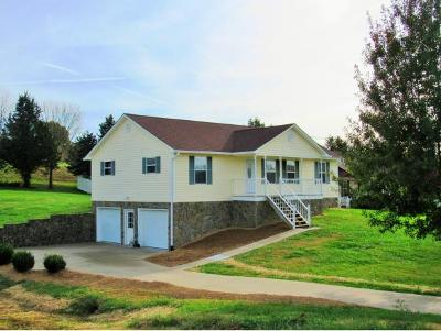 Greeneville Single Family Home For Sale: 310 Wayland Drive