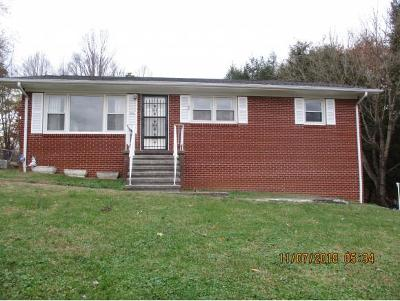 Johnson City Single Family Home For Sale: 1515 Stoneybrook Dr