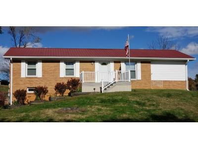 Blountville Single Family Home For Sale: 336 Bell St