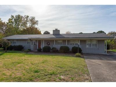 Kingsport Single Family Home For Sale: 2209 Pendragon Rd.