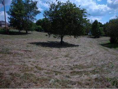 Washington-Tn County Residential Lots & Land For Sale: 202 Tucker Ln