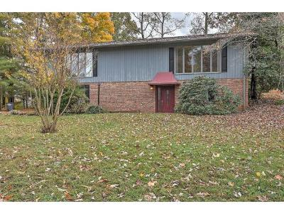 Kingsport Single Family Home For Sale: 5137 Spring Hill Drive
