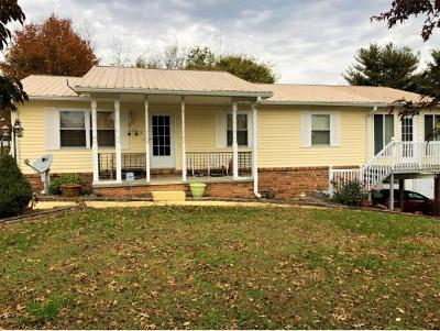 Greeneville Single Family Home For Sale: 290 S Greene Street