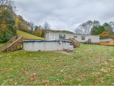 Elizabethton Single Family Home For Sale: 127 Garrison Hollow Road
