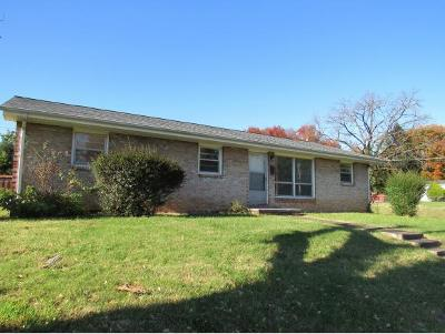 Johnson City Single Family Home For Sale: 200 W Chilhowie Ave