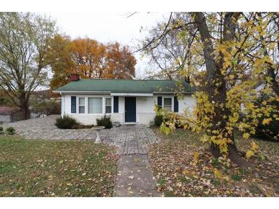 Johnson City Single Family Home For Sale: 306 Chapman Street