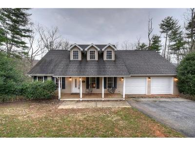 Unicoi Single Family Home For Sale: 122 Mountain Laurel Court