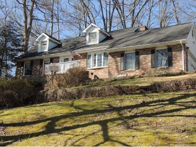 Damascus, Bristol, Bristol Va City Single Family Home For Sale: 21835 Old Dominion Road
