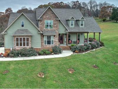 Jonesborough TN Single Family Home For Sale: $798,000